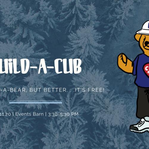 build-a-cub