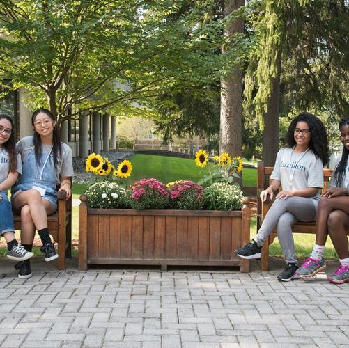 admissions diversity overnight