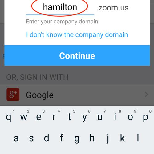 Hamilton Zoom URL