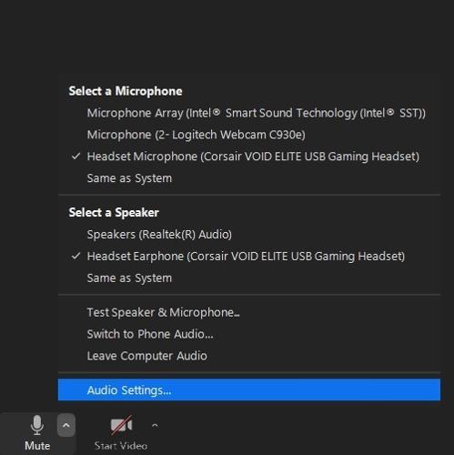 Access Audio Settings in Zoom Meeting