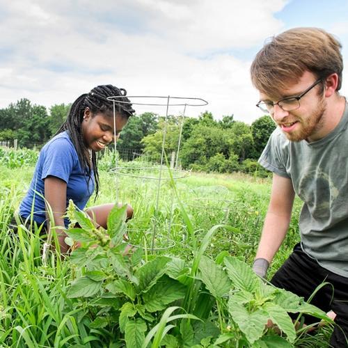 sustainability interns Enogie Omoregbee '21, Chris Hart '19