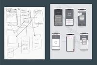 Senior Computer Science Majors Design Apps for Community