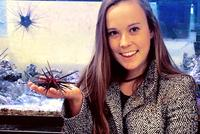 Pieper '18 Sea Urchin Research Leads to AMS Meeting Poster