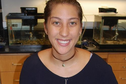 Santiago '19 Studies Heat Shock Protein Genes in Sea Cucumbers