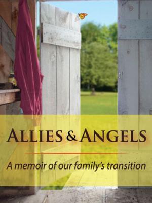 <em>Allies & Angels </em>book jacket