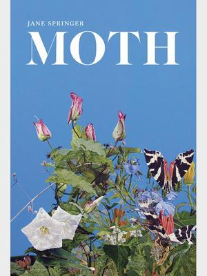 <em>Moth</em> by Associate Professor of Literature and Creative Writing Jane Springer