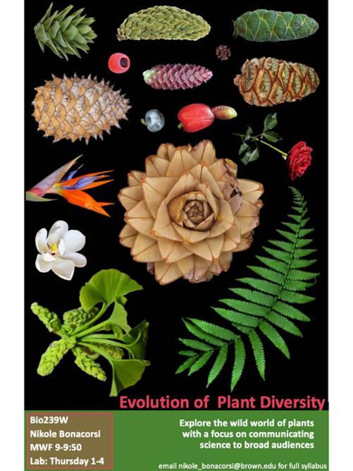 Biology 239w Poster