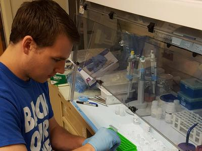 Aaron Beguelin '18 analyzes sea urchin bacteria in a lab.
