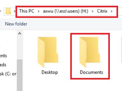 Citrix_Windows_Stata_default_wd