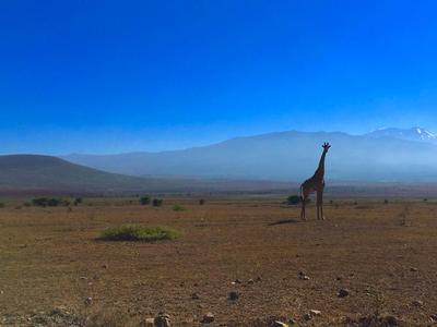 Near the town of Moshi, Tanzania