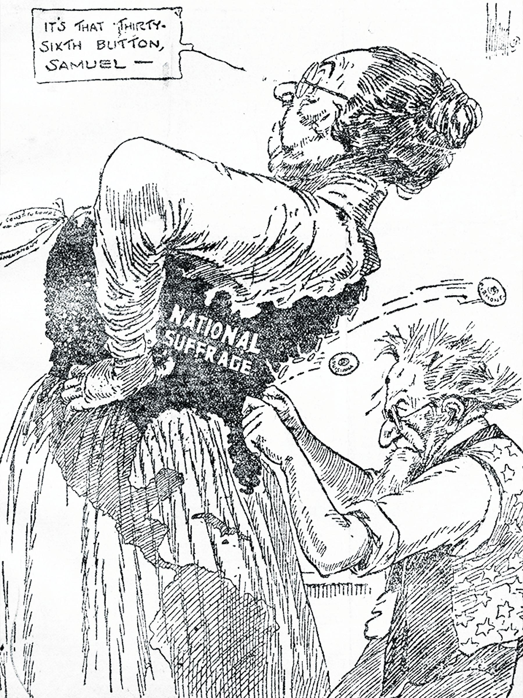 Suffrage Cartoon
