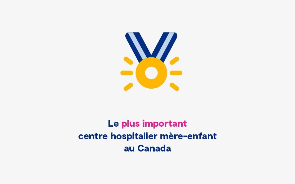 Statistique Plus Important Centre Hospitalier