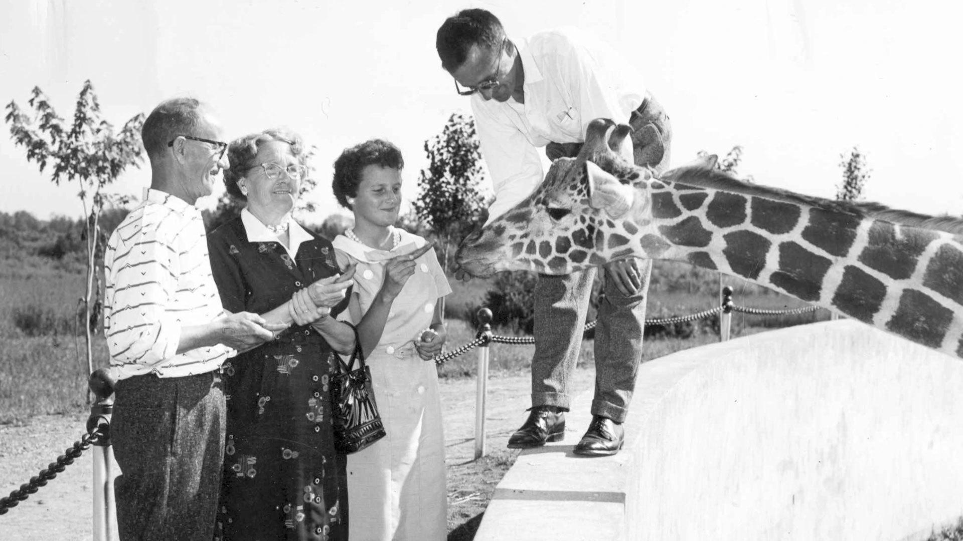Zoo Granby Videolancement Vignette