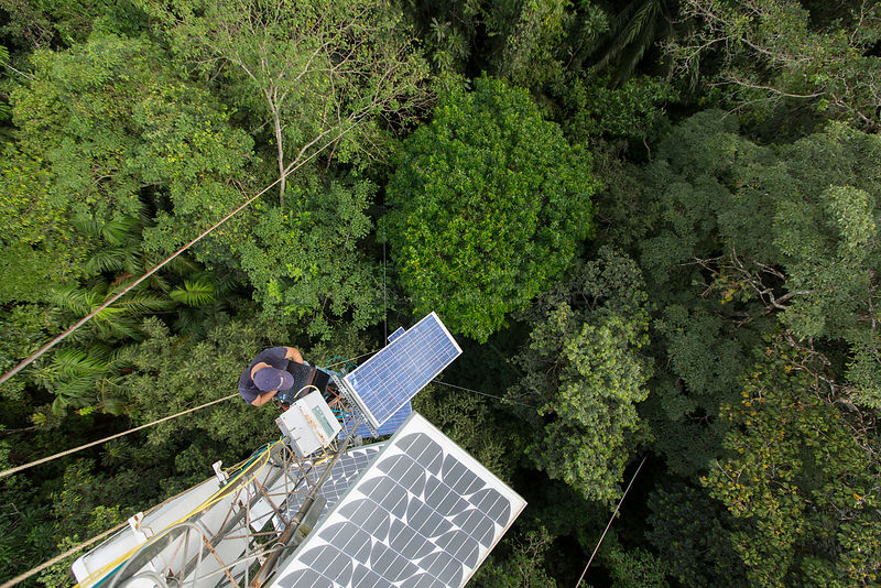 A high 48m tower used to collected data about the CO2 and O2 levels. Tropical rainforest, Barro Colorado Island, Gatun Lake, Panama Canal, Panama.