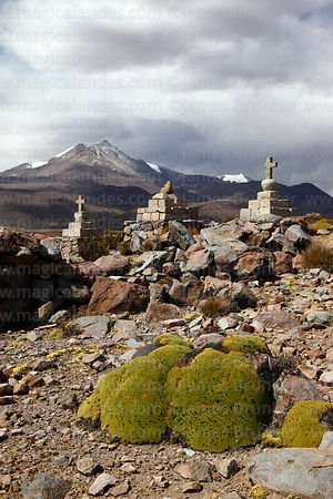 Stone cairns with crosses on hilltop and yareta plant (Azorella compacta), Guallatiri volcano in background, Las Vicuñas National Reserve, Region XV, Chile