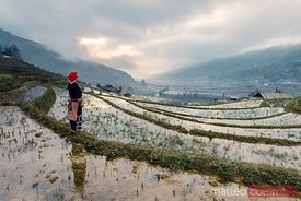 Sunset over the rice paddies of Sapa, Vietnam