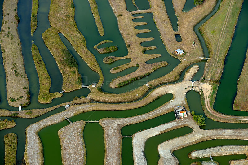 Aerial view of fish farm, La Guittiére Marsh, South Vendée, France, July 2017.