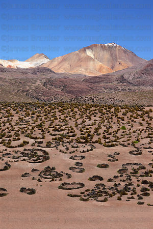 High altitude volcanic desert and Cerro Pumiri peak , Region XV , Chile