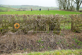 Fence 1 - Melton Hunt Club Ride 2012