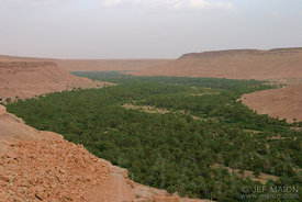 The Ziz Valley
