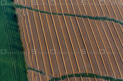 Farmers' rows in rural Ontario