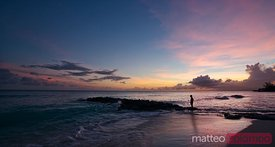 Sunset over beach in the Barbados, Caribbean
