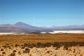View of Salar de Ollagüe and Aucanquilcha volcano from Uyuni to Chile road near border at Avaroa / Ollagüe, Bolivia