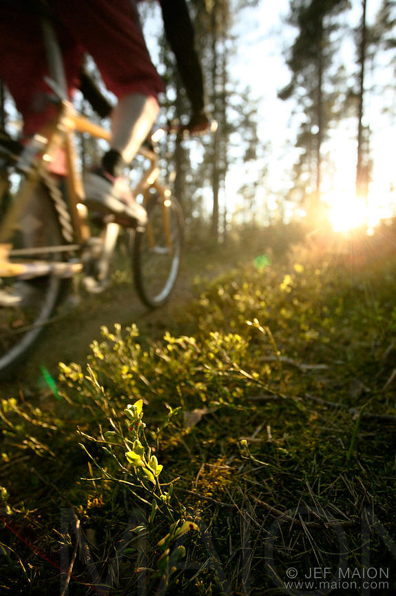 Mountain bike and sun