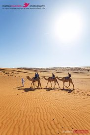 Oman, Wahiba Sands. Tourists riding camels in the desert