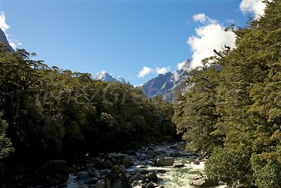 New-Zealand_South-Island-16
