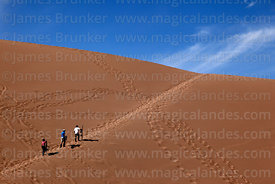 Tourists climbing sand dune during sandboarding trip,  Valle de la Muerte / Death Valley, near San Pedro de Atacama, Region II, Chile