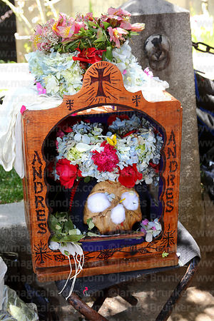 Skull in a wooden box with its name on it, Ñatitas festival, La Paz, Bolivia