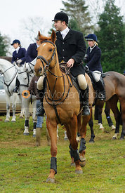 Russell Cripps - The Cottesmore Hunt at Hill Top Farm 10/12/13