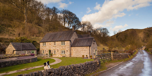 Milldale cottages with Border Collie