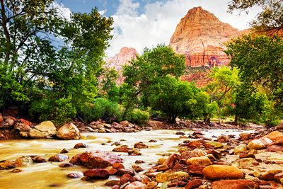 Virgin River in Zion National Park - Utah USA