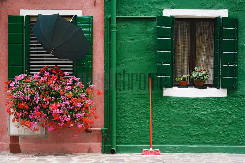 Pink and Green Walls and Window Box