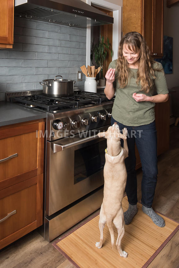 Dog in Kitchen Getting A Treat