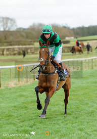 Race 4 - Ladies Open - The Cottesmore Point-to-point 26/2