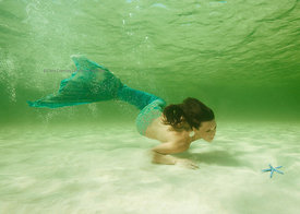 Mermaid in shallow water on west side of Cozumel, Mexico.