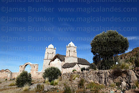 Santa Barbara church and Buddleja coriacea or kiswara tree, Curahuara de Carangas, Oruro Department, Bolivia