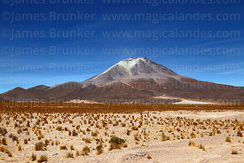View of Ollagüe volcano from near Avaroa / Ollagüe, Bolivia