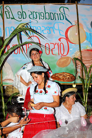 Girls wearing traditional dress on float during parades, Tarija, Bolivia