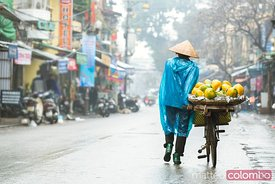 Local woman carrying fruit on her bicycle, Hanoi, Vietnam