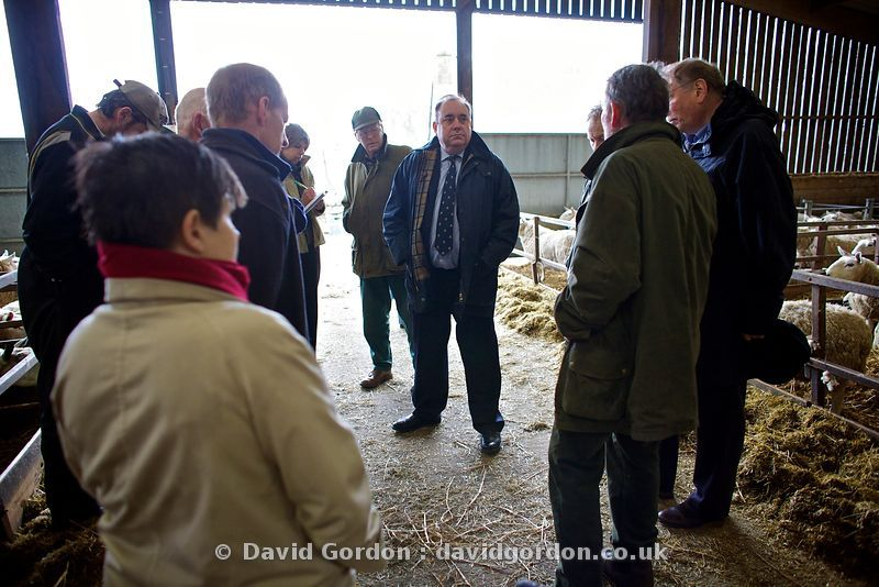 Alex Salmond highland election tour
