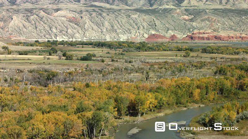 The seasons change as the Bighorn River valley showcases its golden Cottonwood and Aspen trees in the high desert of northern Wyoming