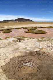 Small mudpot and cold water springs in altiplano at Polloqueri, near Pampa Aullagas, Oruro Department, Bolivia