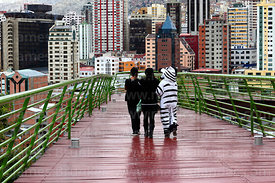 Person wearing zebra costume crossing footbridge with friends, La Paz, Bolivia.