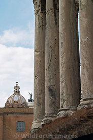 Columns of the Temple of Antonius and Faustina, Forum, Rome, Italy; Portrait