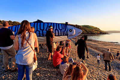 ABERAERON MACKEREL FIESTA photos