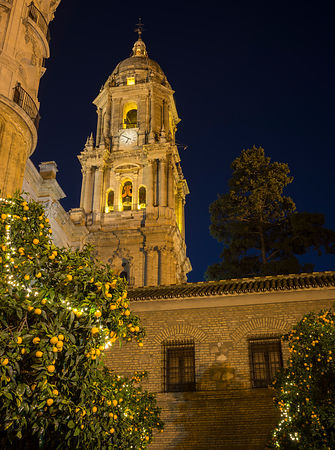 Malaga cathedral at night